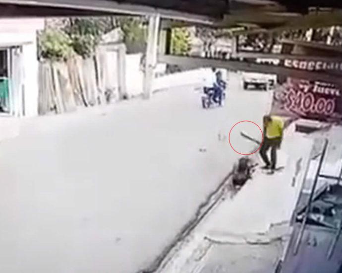 Machete attack. Video