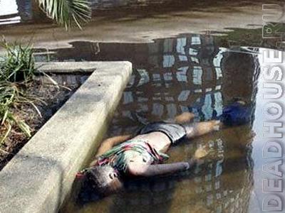 Жертва урагана КАТРИНА. Новый Орлеан