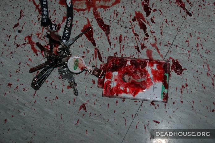 Bloody murder details