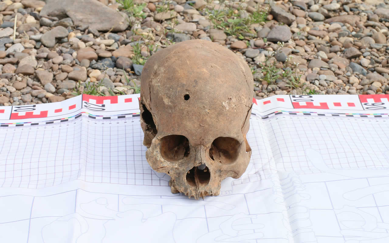 Skull with bullet hole