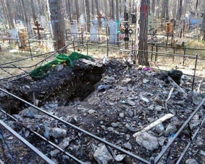 Bear dug grave and eaten corpse