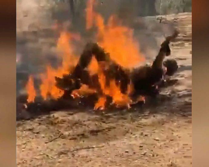 Man burned alive